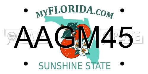 AAGM45 Florida License Plate