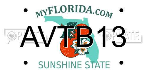 Reports For Plate Number AVTB13 In Florida, United States on
