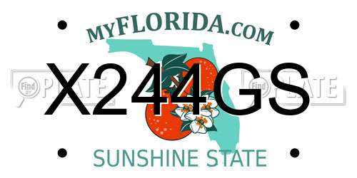 How To Lookup A License Plate Number In Florida - Best Plate 2018