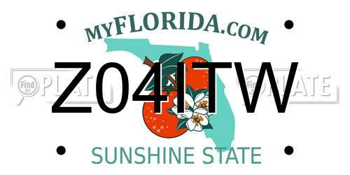 Z04ITW Florida License Plate