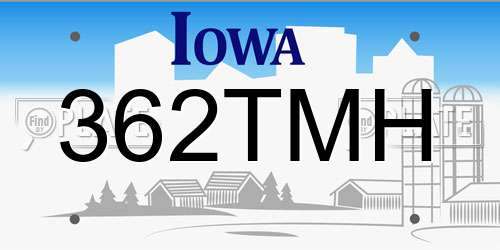 Vehicle License Plate Search
