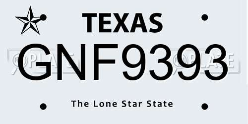 GNF9393 Texas License Plate