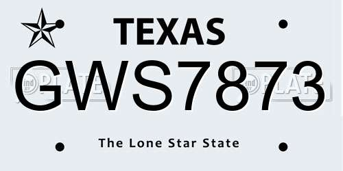 GWS7873 Texas License Plate