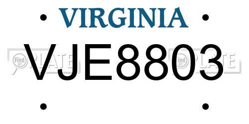 VJE8803 Virginia License Plate