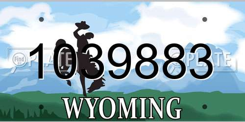 1039883 Wyoming License Plate