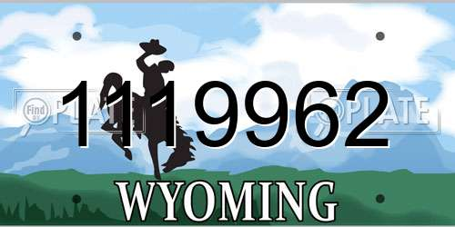 1119962 Wyoming License Plate