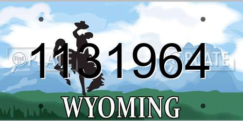 1131964 Wyoming License Plate