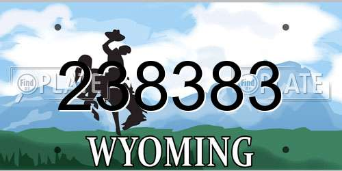 238383 Wyoming License Plate