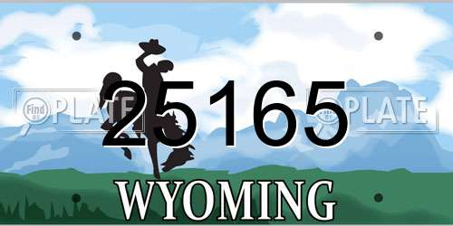 25165 Wyoming License Plate