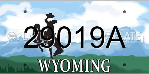 29019A Wyoming License Plate
