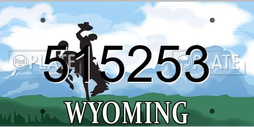 515253 Wyoming License Plate