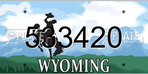 533420 Wyoming License Plate