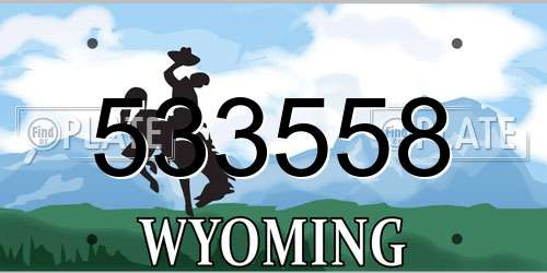 533558 Wyoming License Plate