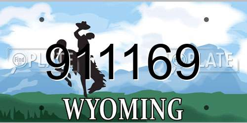 911169 Wyoming License Plate