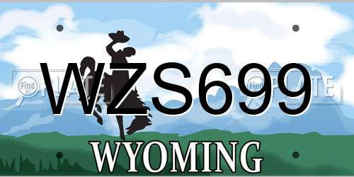 WZS699 license plate in WY state